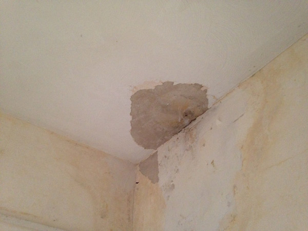 damaged plaster ceiling