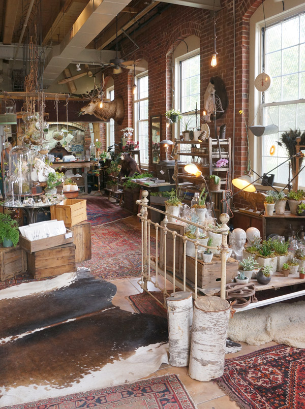 Seed to Stem, Worcester, MA  Shop Tour via Year of Serendipity