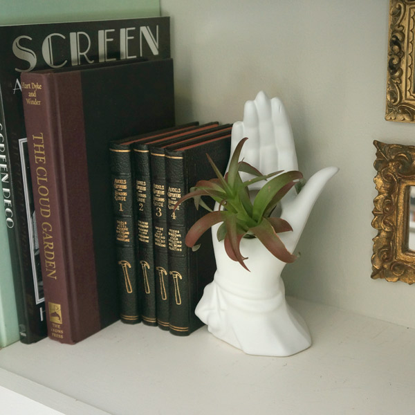 plant-hand-shelf-closeup1