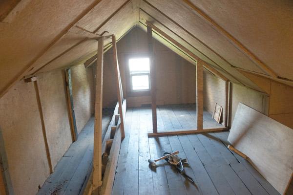 Millie-attic