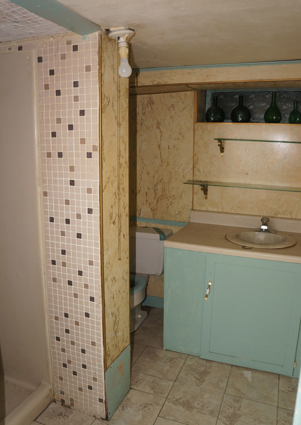 Millie-basement-bathroom