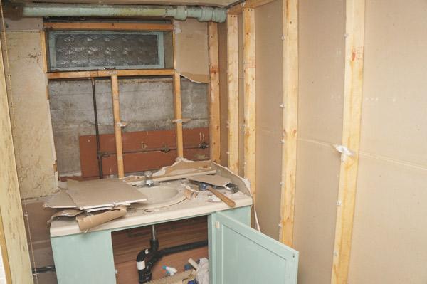 millie week 10 basement bathroom