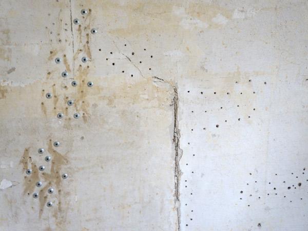 millie-w16-plaster-repair