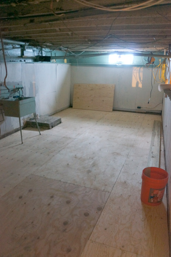 millie-w25-basement-floor