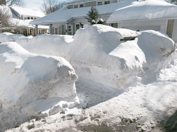 millie-w25-snow