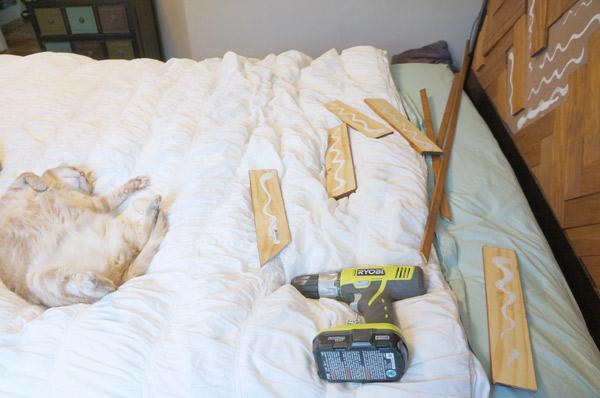 DIY Herringbone Headboard useless cat via Year of Serendipity