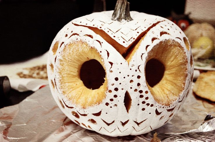 carved owl pumpkin via our little burrow