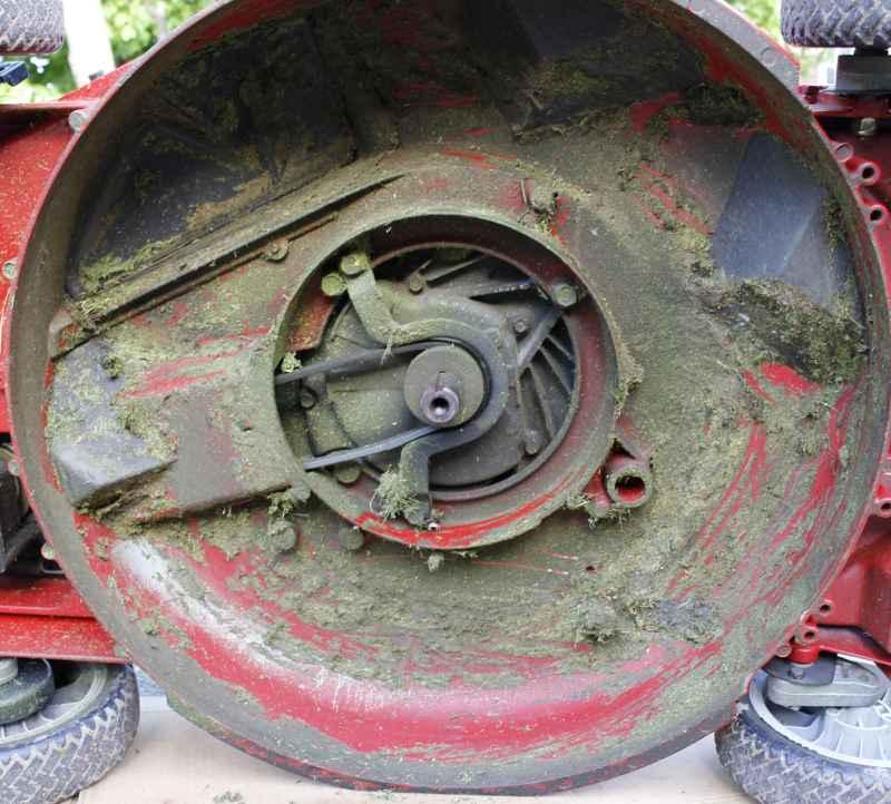 Drain Oil Honda Lawnmower