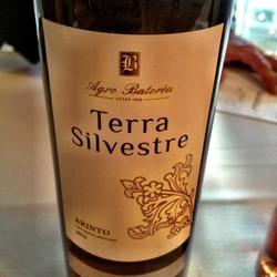 Terra Silvestre Arinta  Wine