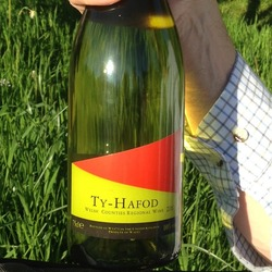 Monnow Valley Ty-Hafod  Wine