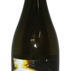 Ricochet Pinto  Wine