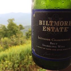 Biltmore Estate Brut Sparkling Wine  Wine