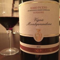 Rosso Piceno Superiore Vigna Monteprandone  Wine