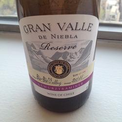 Gran Valle de Niebla Reserve Chile Wine