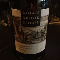 Wallace Brook Cellars Pinot Noir 2010, United States