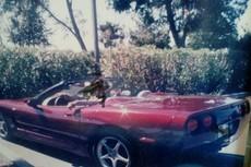 1993 chevy corvette