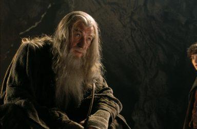 Ian McKellen, Dumbledore