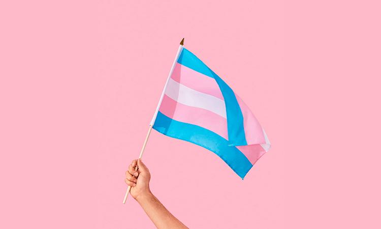 visibilidad transexualidad