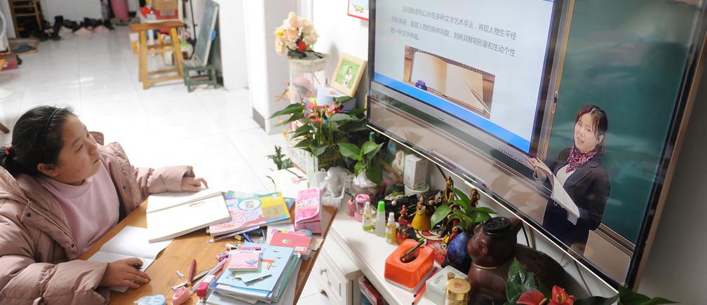 educación televisión