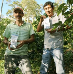 Ashi café peruano GUIA COSAS