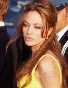 Angelina Jolie, 2007