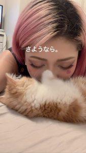 Hana Kimura ciber bullying suicidio