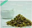 FLOR ARNICA PAIS  [250 g]