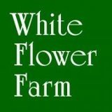 Browse White Flower Farm