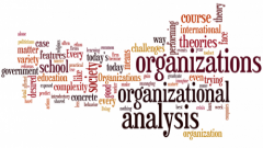 Icon for Organizational Analysis
