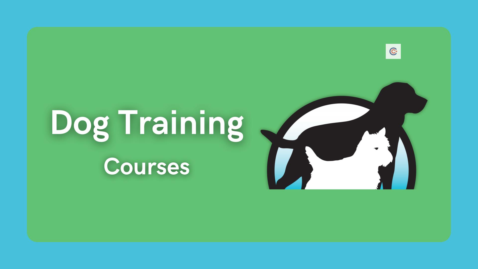 7 Best Dog Training Courses  - Learn Dog Training Online