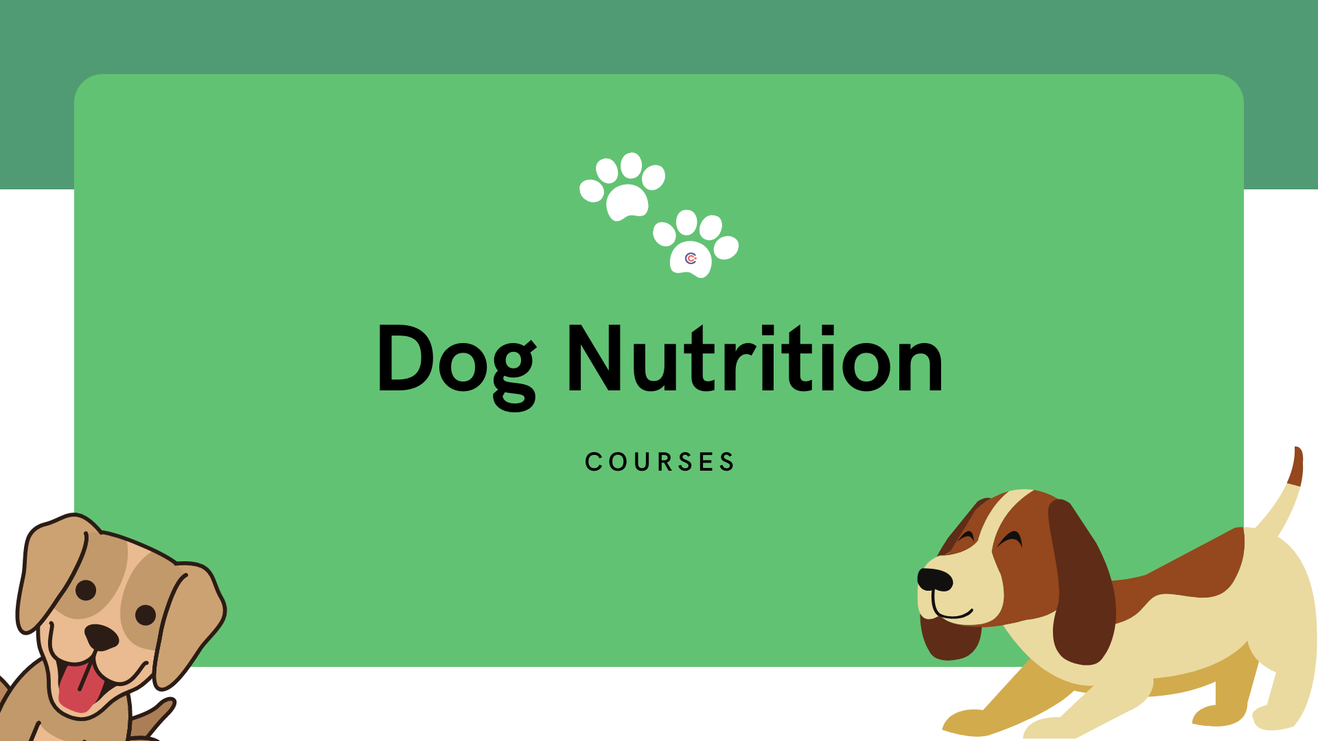 5 Best Dog Nutrition Courses - Learn How to Nutrition Your Dog Online!