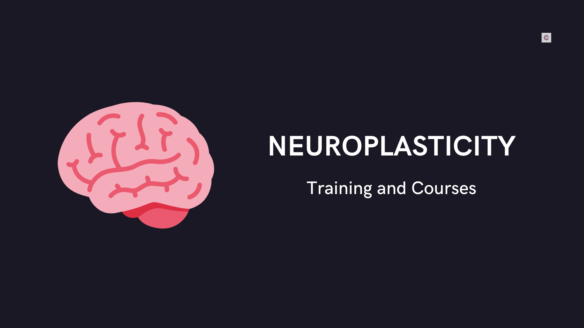 6 Best Neuroplasticity Training and Courses - Learn Neuroplasticity Online