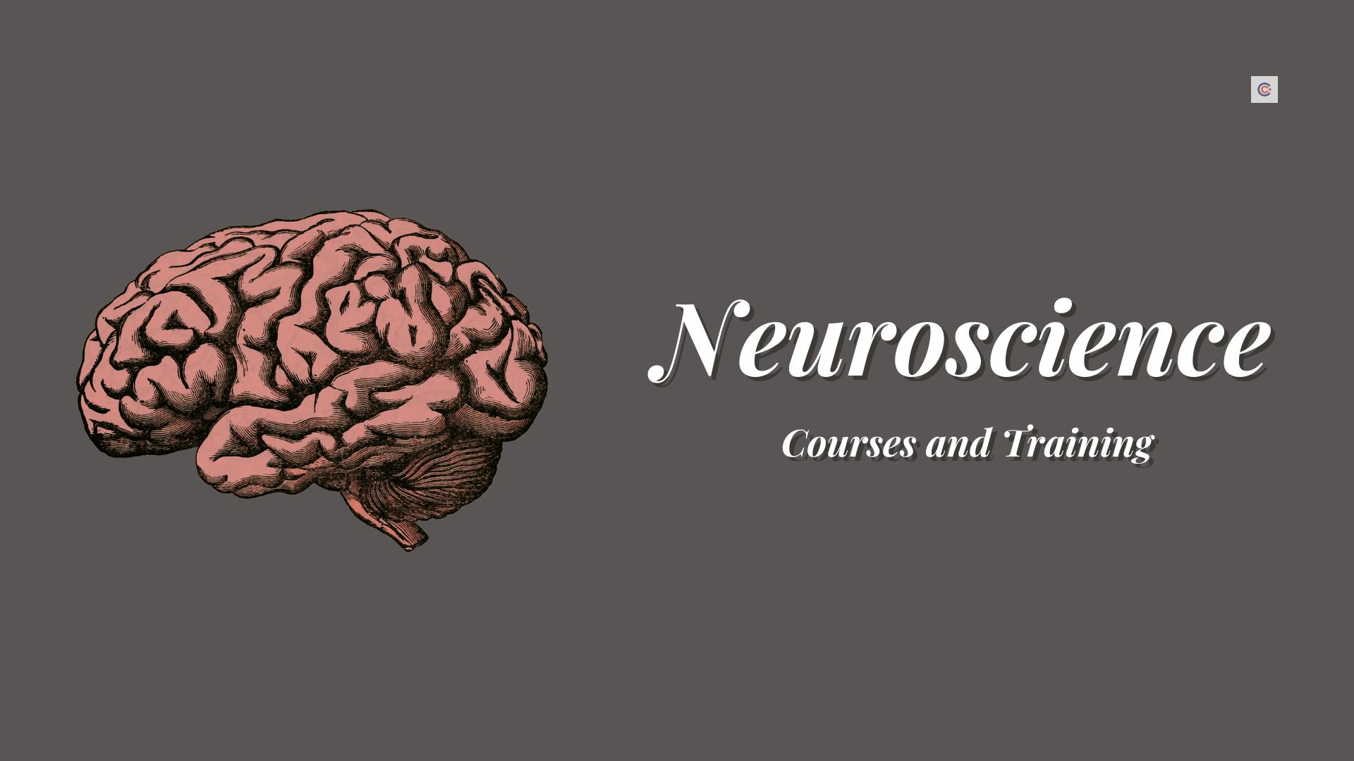 11 Best Neuroscience Courses and Training - Learn Neuroscience Online