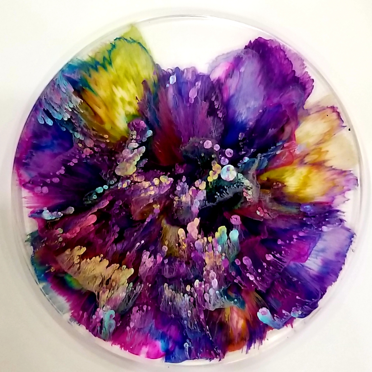 3D Ink Explosion - Frameless! | Maine Adult Education