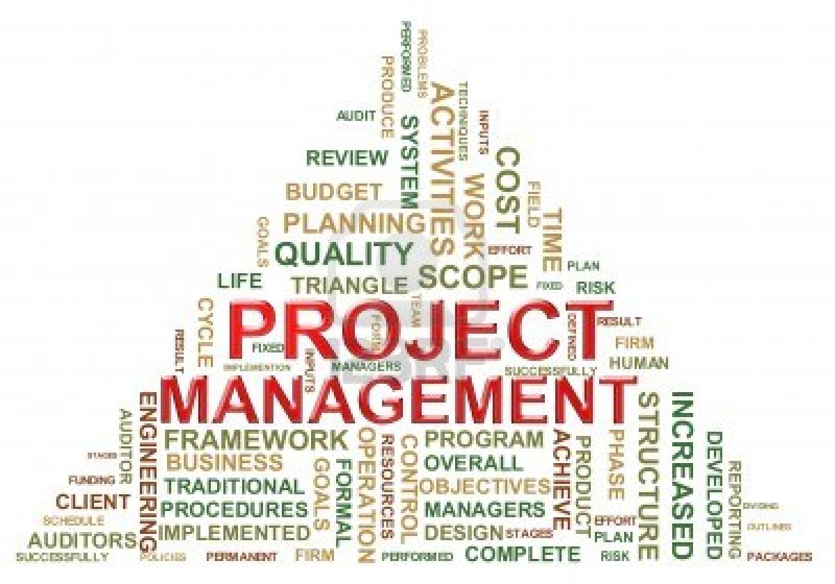 project management peak lan project risk management