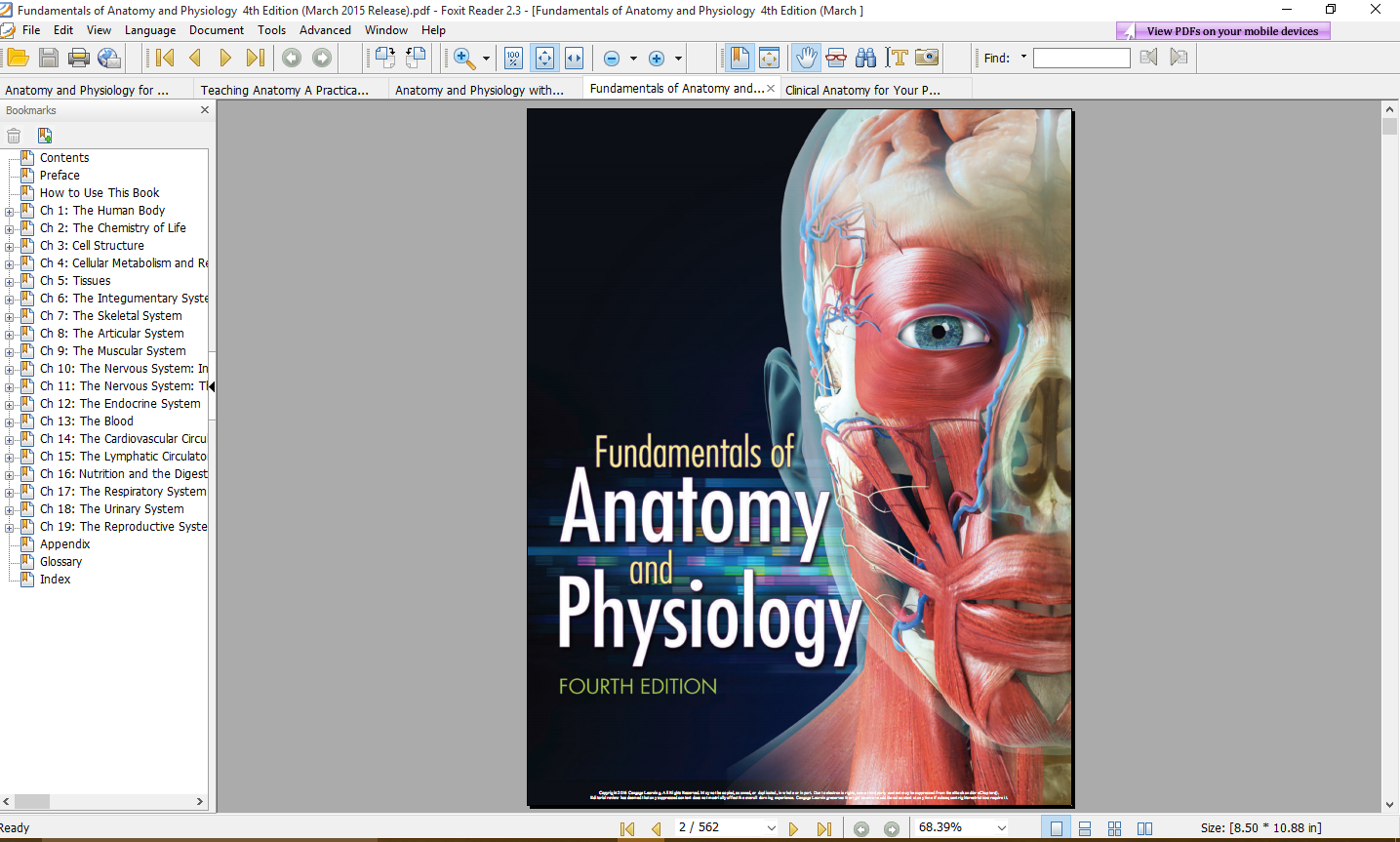 Groß Human Anatomy And Physiology Martini 9th Edition Fotos ...
