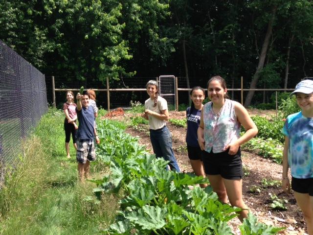 Abundance Farm 4