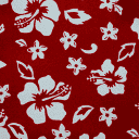 HAWAII RED INSERT AND TRIM material swatch
