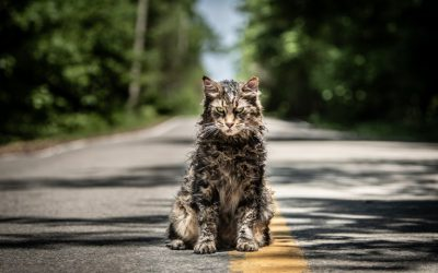 Victor Pascow confirmed to return for Pet Sematary remake