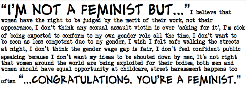 not a feminist but
