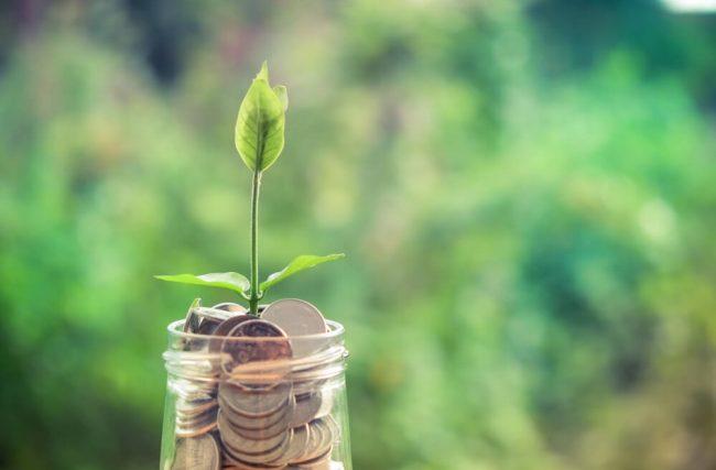 DPGE: saiba o que é e como funciona esse tipo de investimento