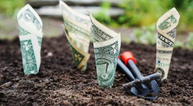 Dollars being planted - who should a Christian support