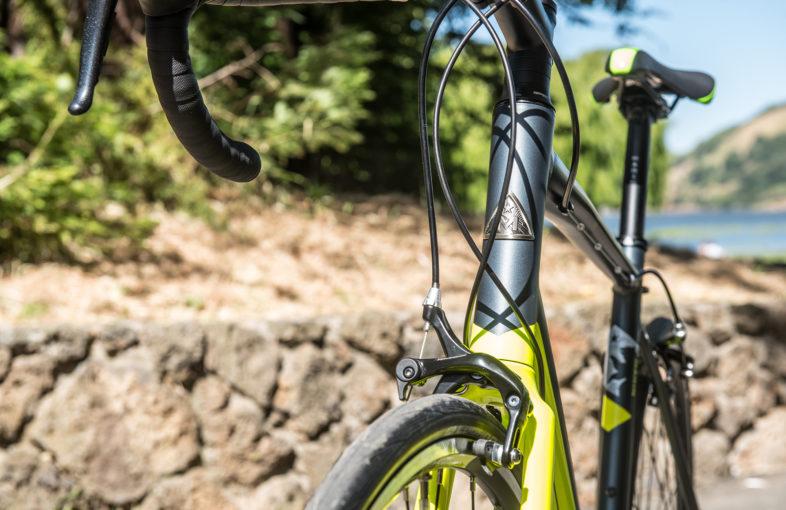 2000X1298 Bike Gallery Build 0021S 0003 Argenta Tech 10