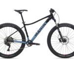 19 Wildcat 5 Blue 2000X1298