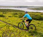 2000X1298 Bike Gallery Wildcat Trail 1