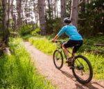 2000X1298 Bike Gallery Wildcat Trail 3