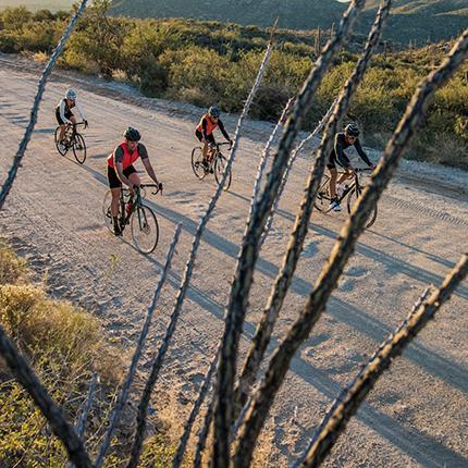 Homepage | USA Cycling