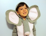 Elephant, Dinosaur and Owl Kids Costumes