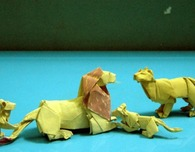 Incredible Origami