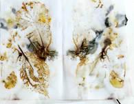 Floral-Printed-curtain - Weaveron Textile